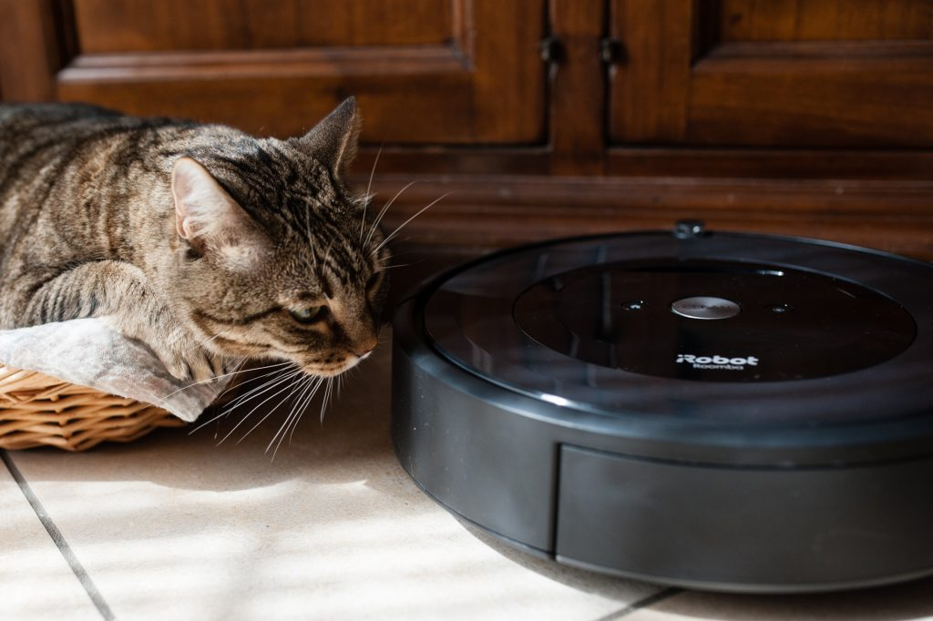 gatto roomba