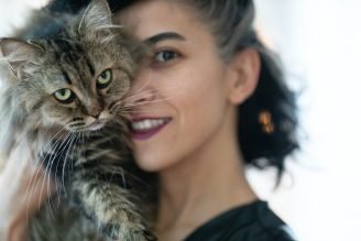 woman-carrying-brown-tabby-cat-3356488